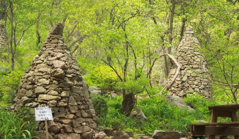 Jangheung Natural Arboretum2