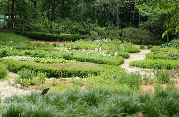 Seoul National University Arboretum1