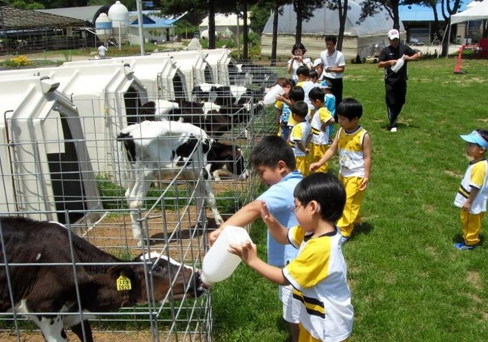 Art Farm Pocheon