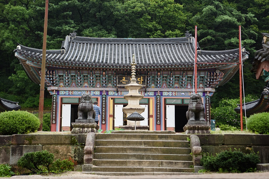 Bongseonsa Temple Stay_ Namyangju