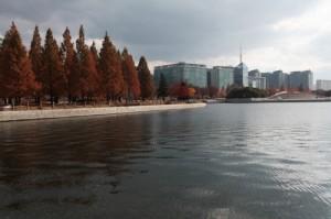 一山湖公園4