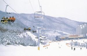 陽智パイン・リゾート(スキー場)