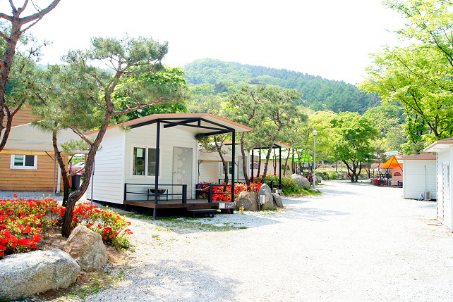 長興樹木園キャンプ場