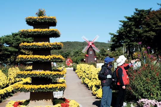ソウル大公園秋祭り