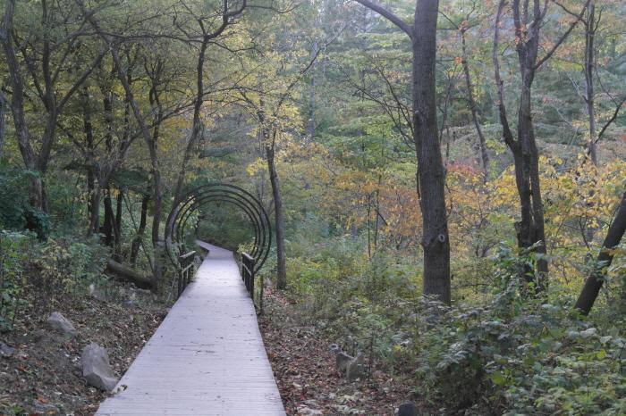 有明山休養林2