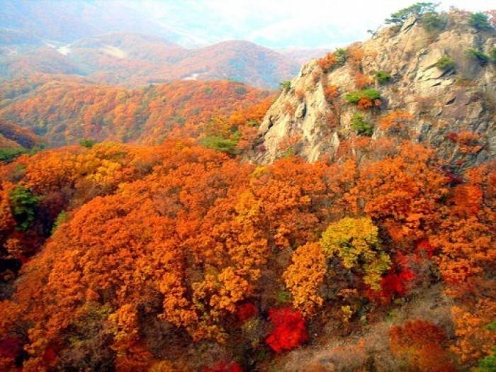 坡州・紺岳山紅葉祭り