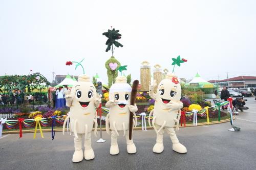 坡州開城高麗人参祭り