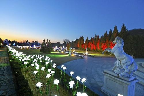 碧草池樹木園「愛が溢れる光の庭園」