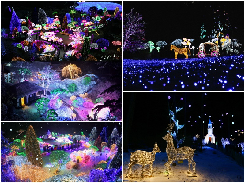 アチムコヨ樹木園「五色の星光り庭園展」