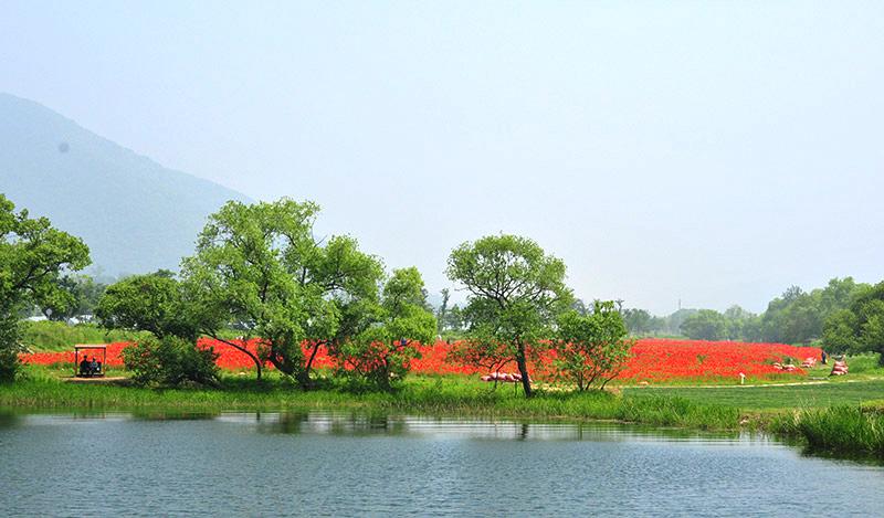 南楊州「水の庭園」