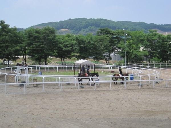 レークベリー乗馬クラブ