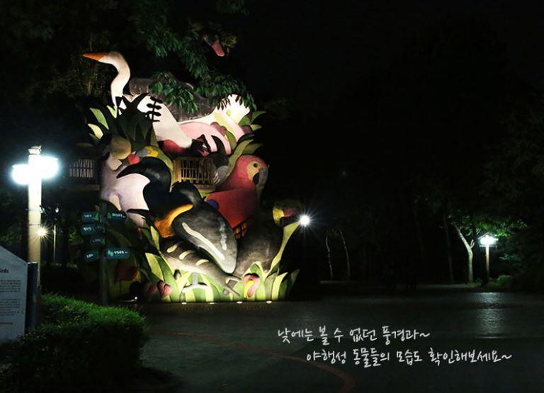 ソウル大公園動物園夜間開園