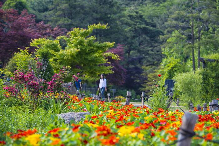 草の香り花道ヒーリングフェスティバル2017