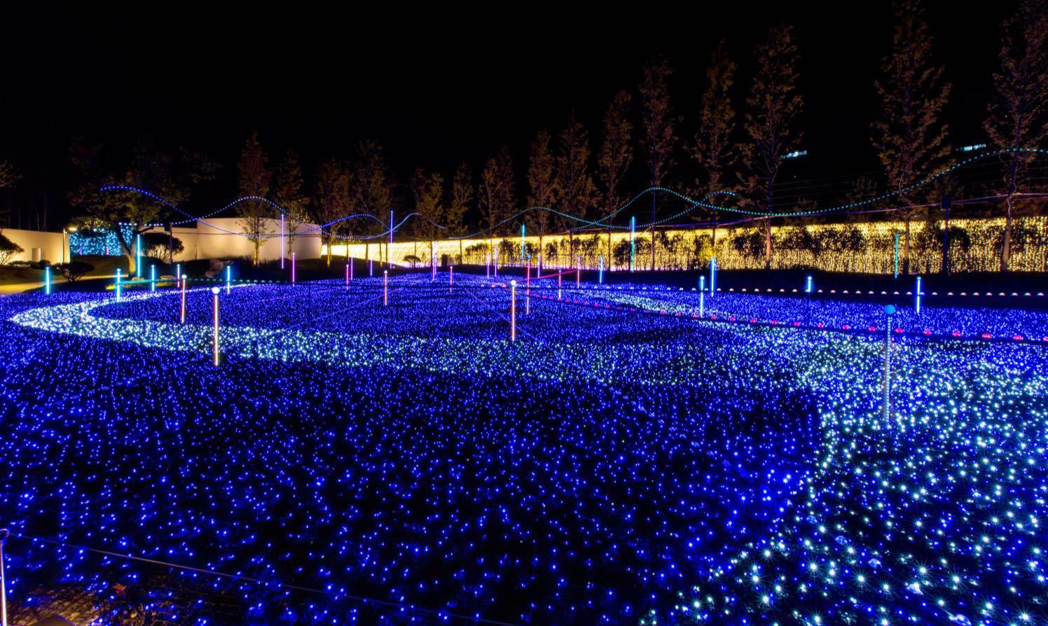 星光庭園ウジュ5