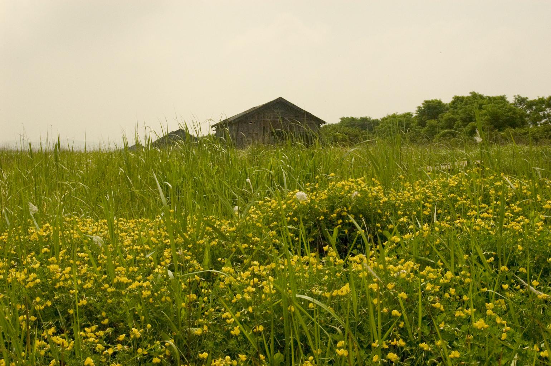 河沟生态公园
