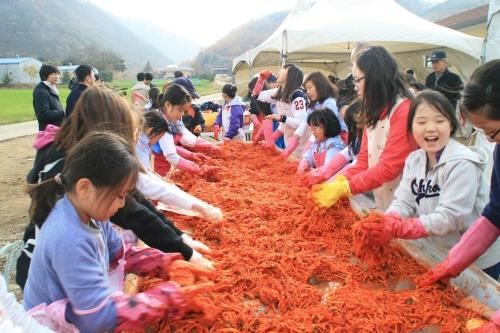 2015 杨平泡菜体验游