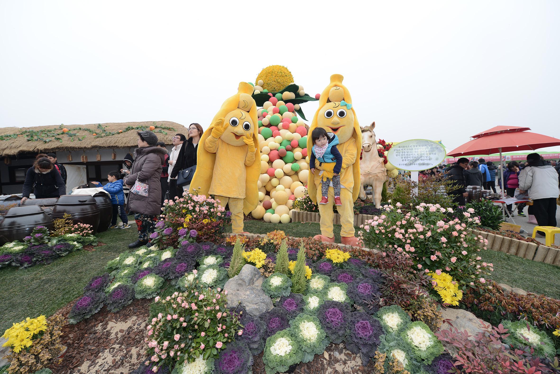 2015 坡州长湍豆节