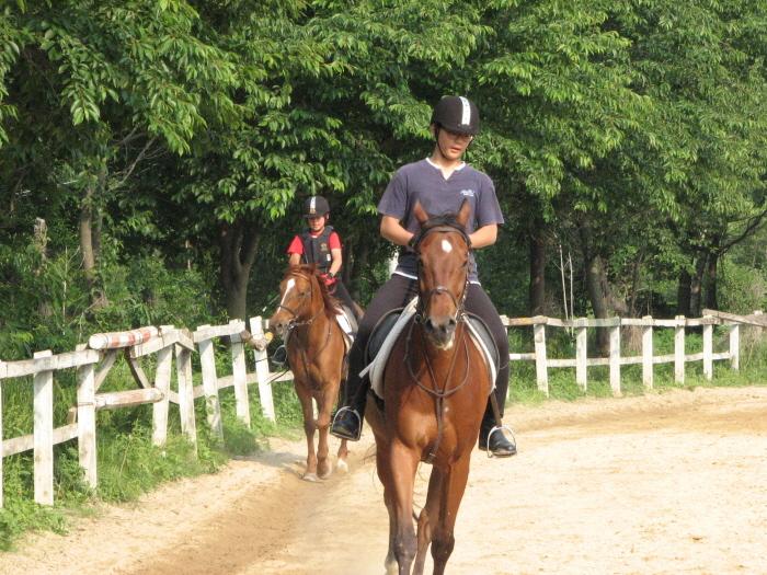 NAPA VALLY骑马场