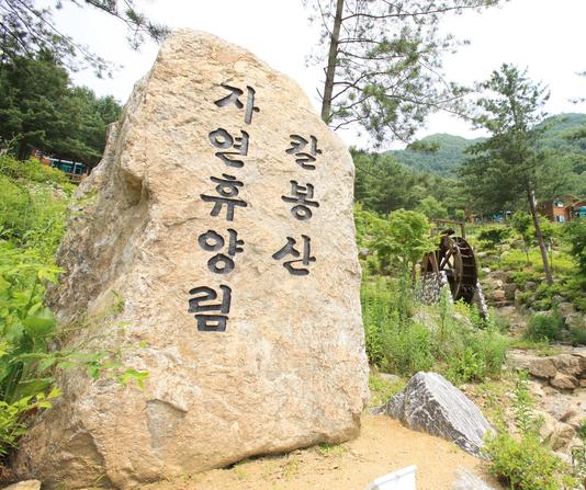 刀峰山自然休养林2