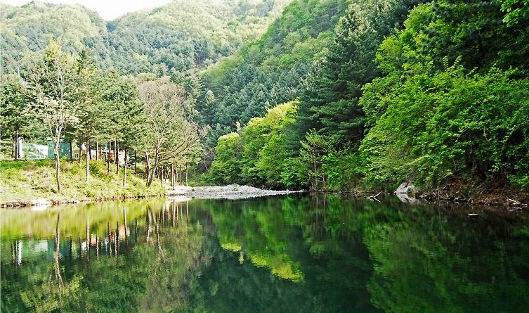 刀峰山自然休养林3