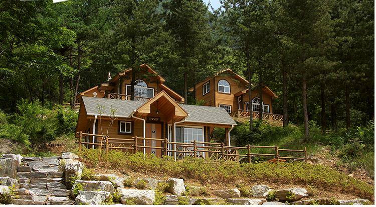 刀峰山自然休养林