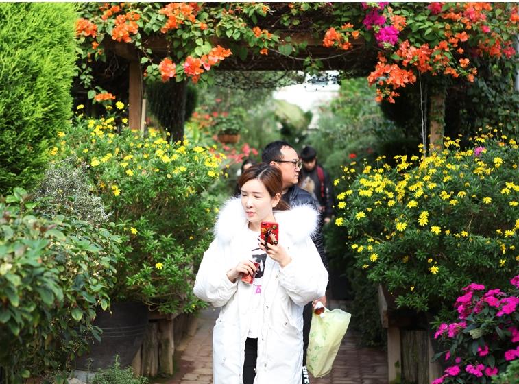 香草植物博物馆春花节