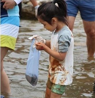 杨平鲇鱼须节