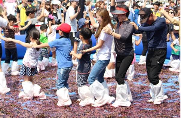华城松山葡萄节