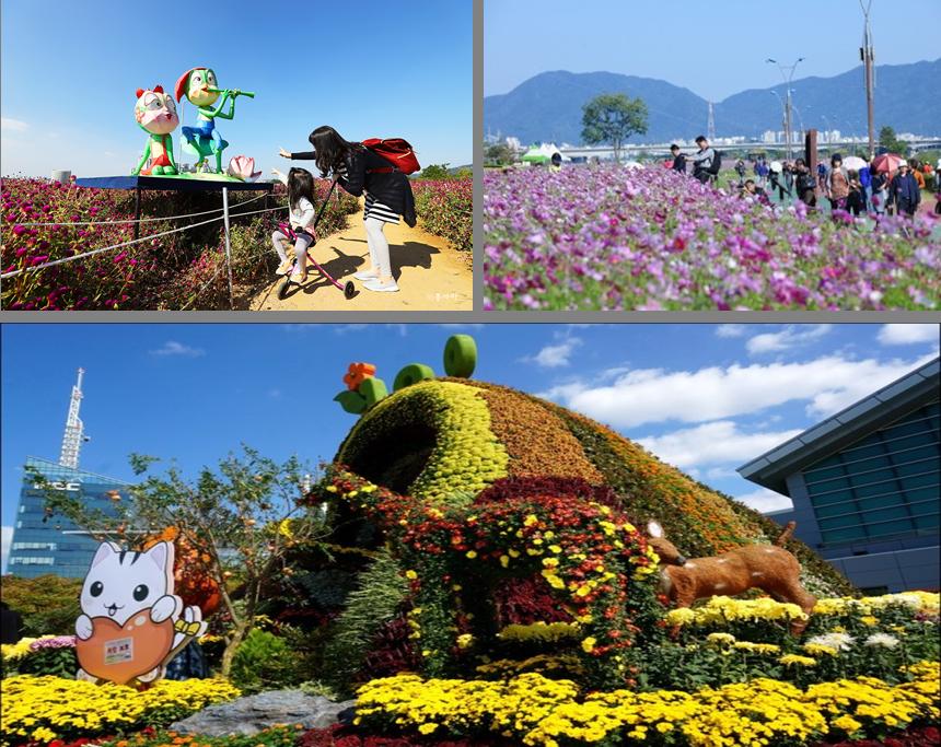 9月,秋花馨香的京畿道之旅