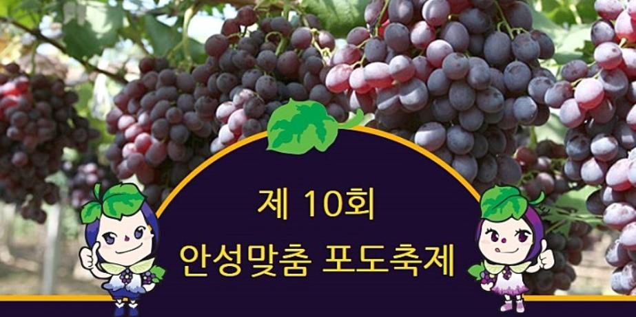 安城葡萄节