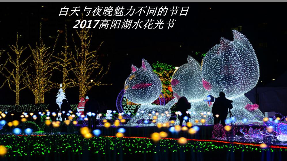2017高阳湖水花光节