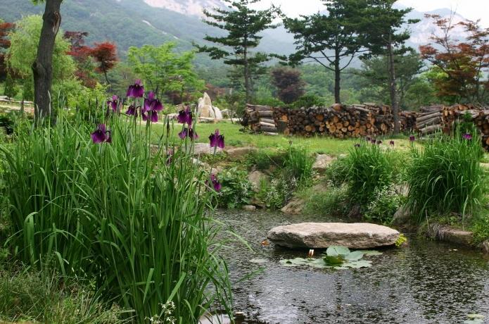 南楊州山野之聲樹木園