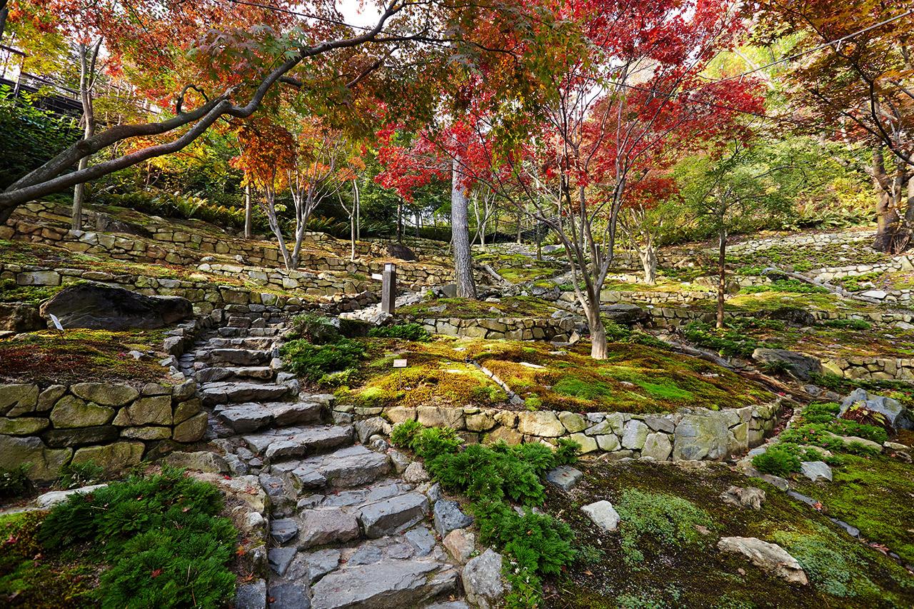 昆池岩和談林
