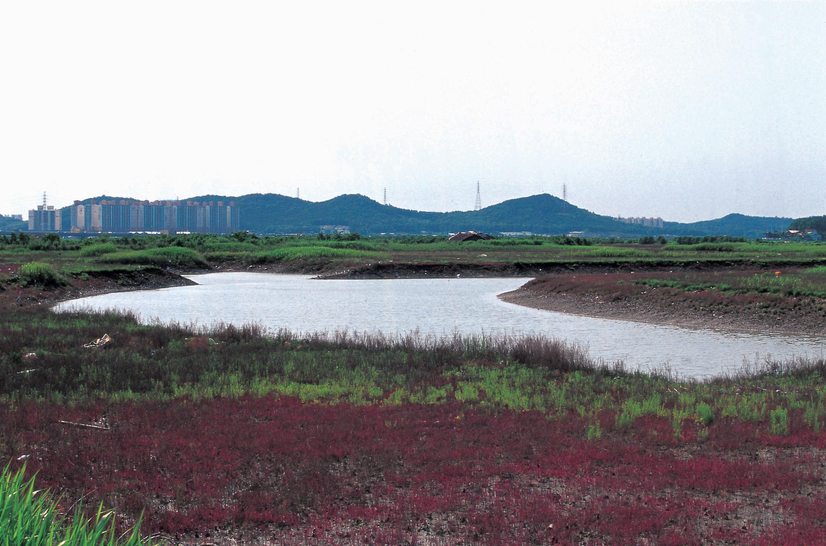 河溝生態公園