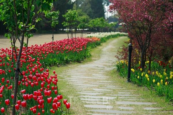 碧草池文化樹木園(벽초지 문화수목원)