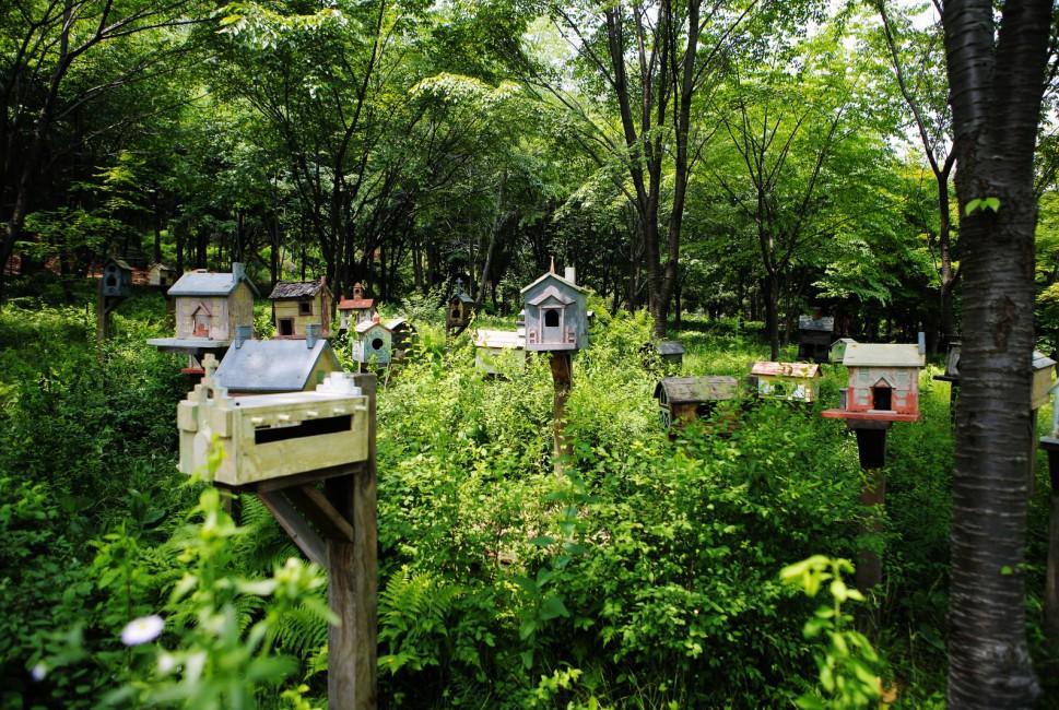 Eunices Garden(유니스의 정원)
