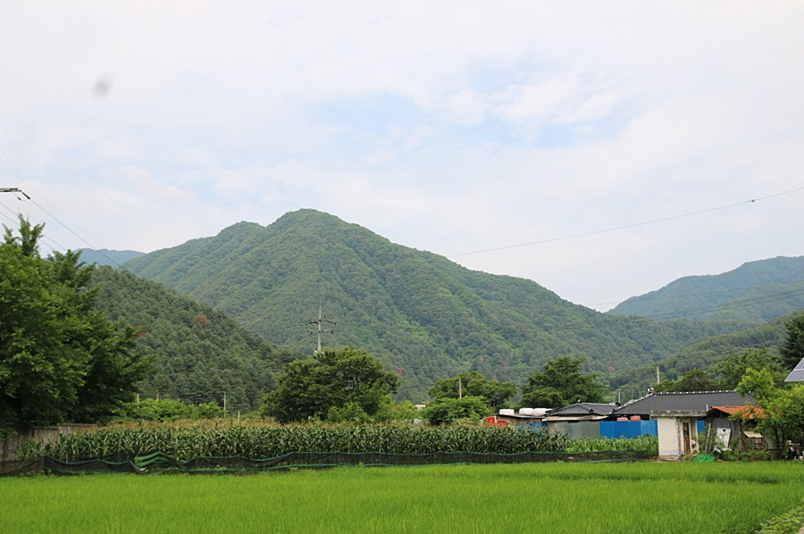 加平九畝村(가평 아홉마지기 마을)