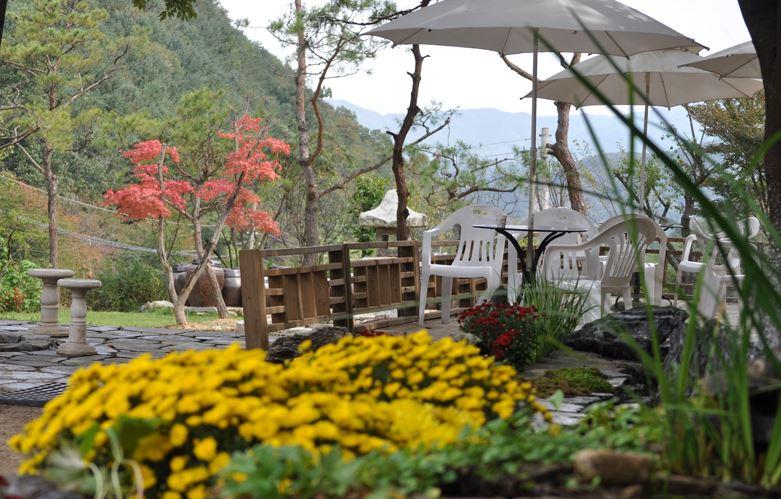 林間庭園(숲속의 정원)京畿東南部地區主題派對場所2