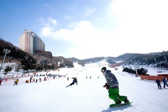 陽智Pine渡假村滑雪場(양지파인리조트 스키장)4