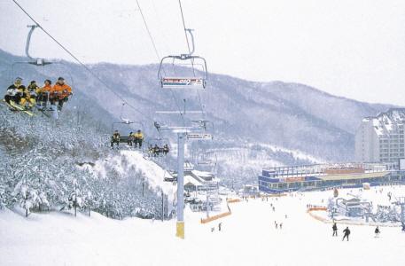 陽智Pine渡假村滑雪場(양지파인리조트 스키장)5