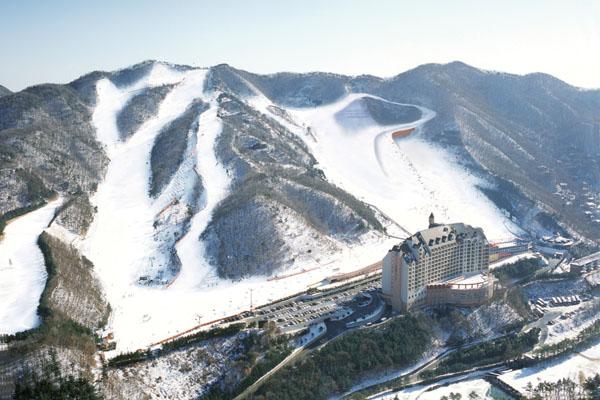 陽智Pine渡假村滑雪場(양지파인리조트 스키장)2